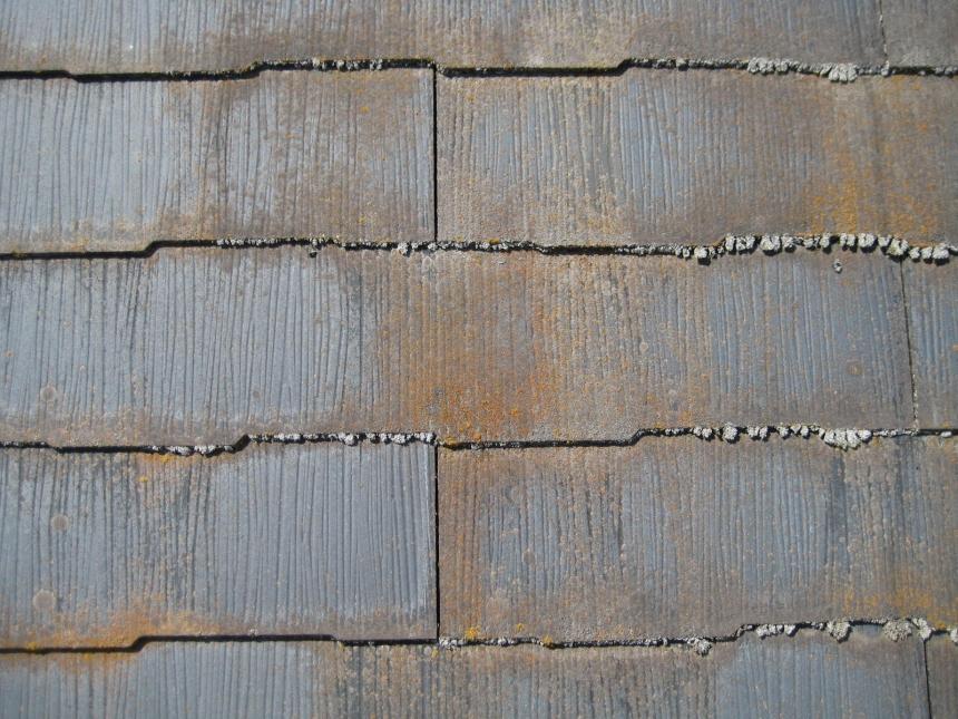 カビが付着したスレート屋根